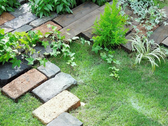 雑草の手入れが行き届いた庭